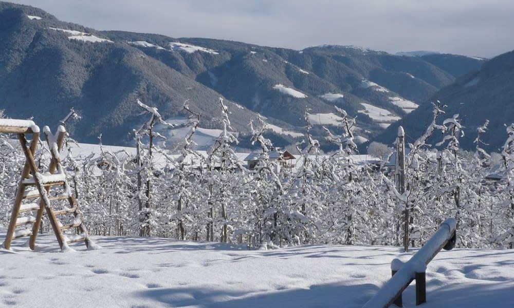 Godetevi le vostre vacanze invernali in agriturismo